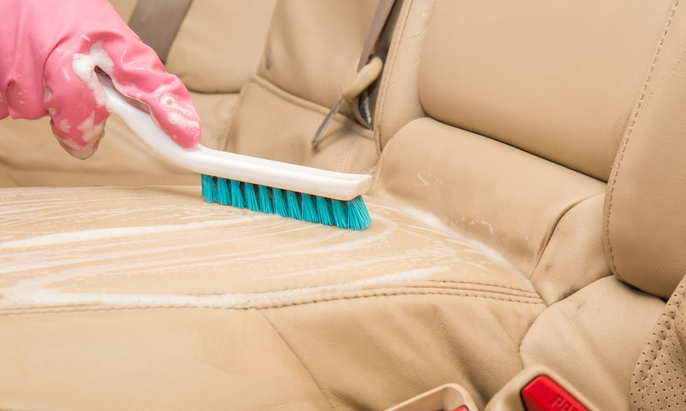 Brush the leather clean